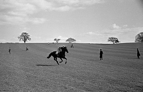 Point to point race Worcs  (1967)