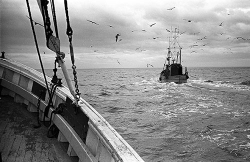 Heading out to the fishing grounds, North Sea  (1979)