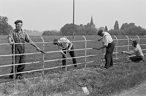 Painting an estate fence, Wichenford Worcs  (1969)